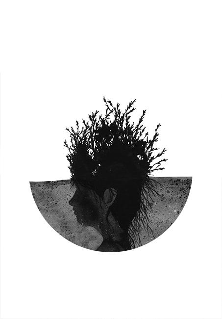 cabeza-planta