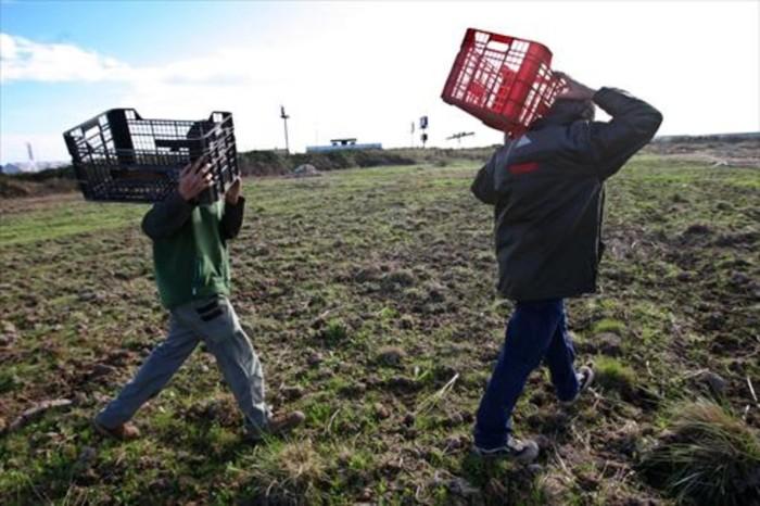 campesinos-8la-agricultura-uno-los-sectores-que-mas-trabajo-autonomo-perdido-1504301373210