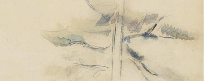 estudio-de-un-árbol_cezanne_galiciangarden_frag-177882578.jpg
